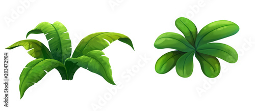 illustration shrub for cartoon isolated on white background - 203472904