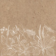 Floral vector background with plantain, insects and  place for text on kraft paper. Invitation, greeting card or an element for your design.
