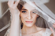 happy stylish bride looking under veil. space for text. gorgeous bride getting ready and posing in the morning. marriage concept