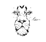 Hand drawn vector abstract artistic ink textured graphic sketch drawing illustration of wildlife lion head isolated on white background - 203511921