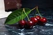 Several red sweet cherries and big green leaf on dark marble background..