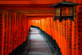 Senbon Torii at Fushimi Inari Shrine. - 203535527