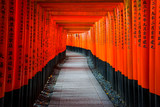 Senbon Torii at Fushimi Inari Shrine. - 203535583