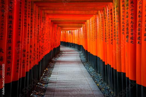 Plexiglas Kyoto Senbon Torii at Fushimi Inari Shrine.