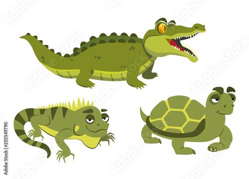 Fototapeta alligator, iguana and turtle on white background