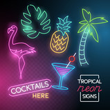 Tropical Neon Light Signs - 203557597