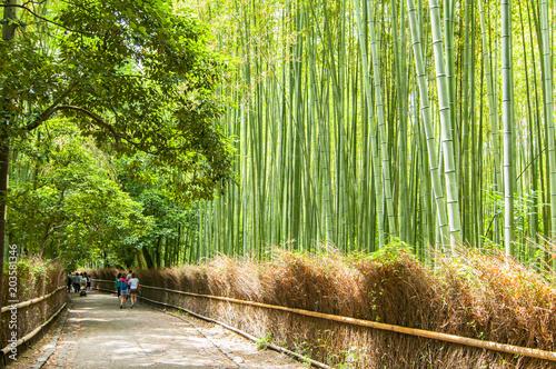 Plexiglas Bamboe Path to bamboo forest, Arashiyama, Kyoto, Japan.
