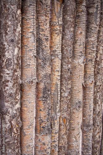 Wood log fence - 203600777