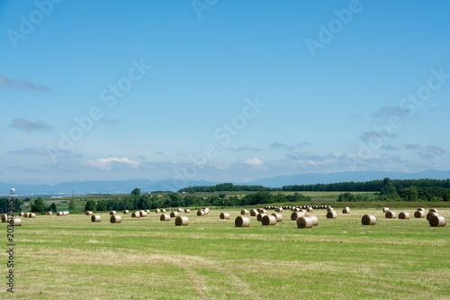 Plexiglas Blauw 青空と牧草ロール
