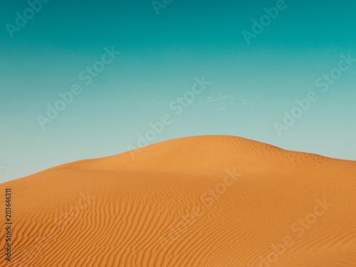 Sand Dunes in the Sahara Desert - 203646311