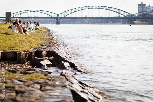 Rheinwiesen Köln