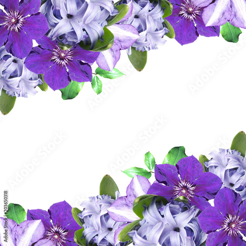 Beautiful floral background of clematis and hyacinth  - 203650318
