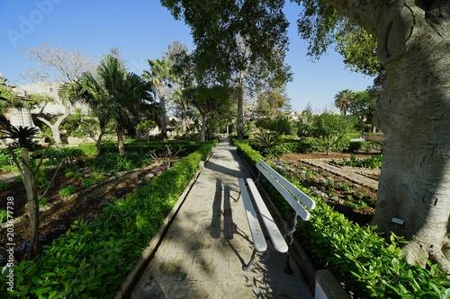 Plexiglas Spoorlijn マルタ島の庭園
