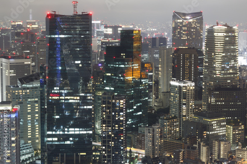 Plexiglas Tokio Tokyo skyline at night