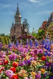 Beautiful floral decoration in Timisoara, Romania - 203700313