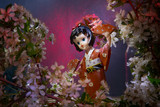 Statuette dancing geisha in the garden. Sakura with decorative lighting