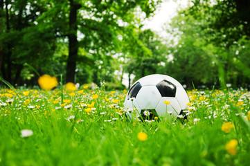 Ball in Wiese, klassisch schwarz weiss mit Blumen