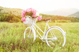 Beautiful white vintage bicycle with basket full of pink peonies outdoors in nature on sunny spring day