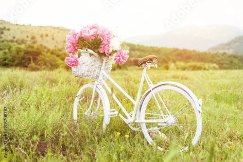 Sticker Beautiful white vintage bicycle with basket full of pink peonies outdoors in nature on sunny spring day