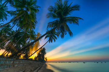 Sunrise on the tropical beach with sun rays piercing through the coconut palm trees in the sky creates beautiful scenery to welcome new days at paradise beach.