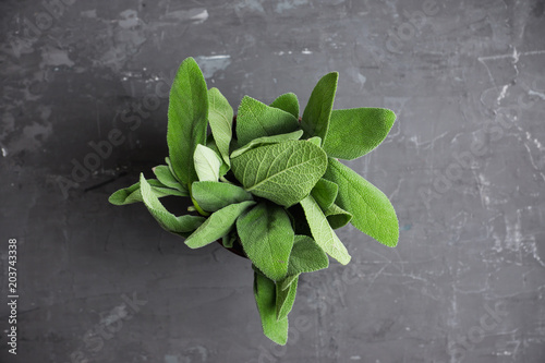Fototapeta Salvia officinalis. Sage leaves on the rustic wooden background. Selective focus.