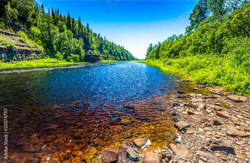 Plexiglas Lente Summer forest river landscape