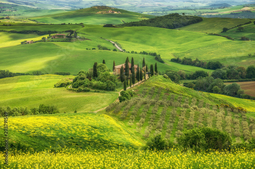 Fototapety, obrazy : Tuscany spring, Landscape, Italy