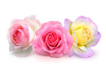 Blumen 926