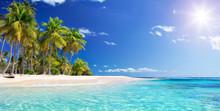 """Постер, картина, фотообои """"Palm Beach In Tropical Paradise - Guadalupe Island - Caribbean """""""