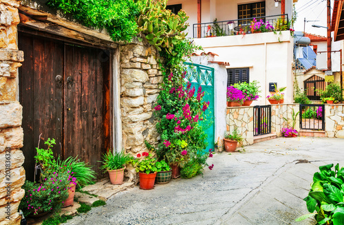 Fotobehang Freesurf Beautiful floral streets of traditioanl villages of Cyprus island