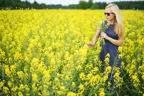 Poster field of canola