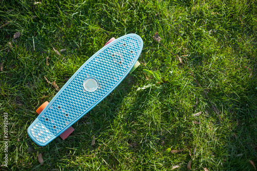 Plexiglas Skateboard Skateboard of blue color with multi-colored wheels on green grass