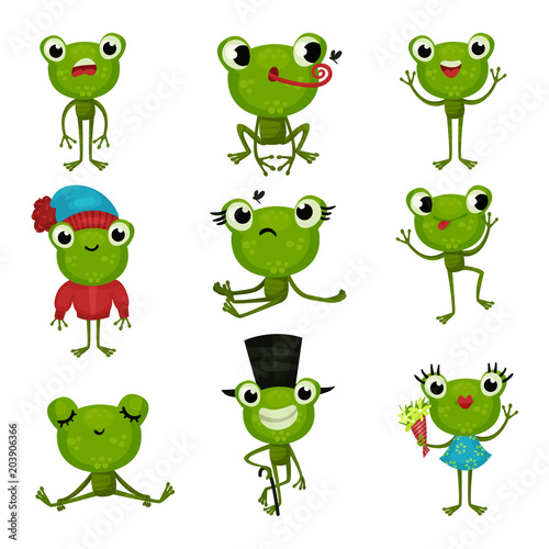 Fototapeta Set of green frogs in different poses and with various emotions. Funny humanized toads. Colorful flat vector icons