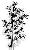 bamboo black and grey branches bunch isolated on white