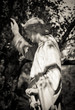 canvas print picture - Angel stone figure on Melaten Cemetery in cologne on a summer day