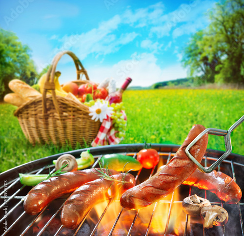 Barbecue picnic on a meadow - 203925703