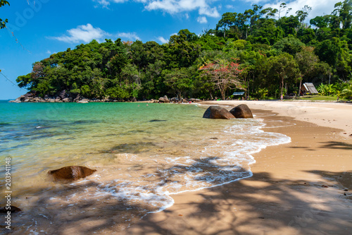 Fotobehang Tropical strand A beautiful, deserted tropical sandy beach surrounded by greenery