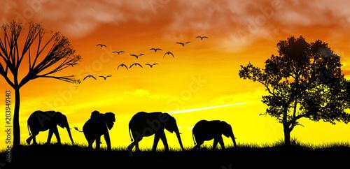 Plexiglas Geel familia de elefantes en el atardecer