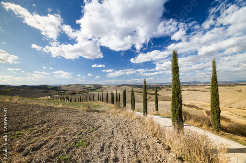 Fotobehang Toscane Tuscan hills with trail, house and cypress in senese clays, Italy