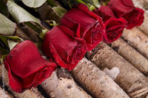 Czerwone róże na tle