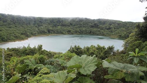 Plexiglas Olijf Costa Rica Lac