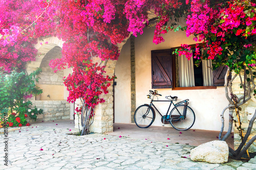 Fotobehang Freesurf Blooming purple tree and old bike - ideas for garden decoration
