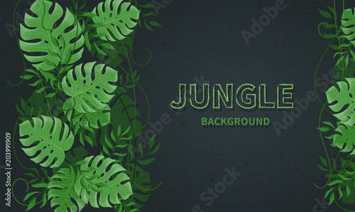 Fototapeta Tropical jungle leaves. Green tropic palm and monstera leaves, lianas on the black background. Vector background banner
