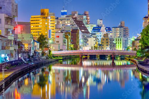 Wakayama City, Japan Cityscape