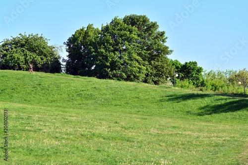 Plexiglas Pistache Park