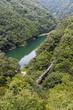 Lida line and green mountain in summer season