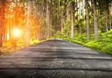 strada nella foresta con luce accecante