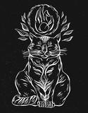 Cat print,cat graphic,cat illustration,canvas print - 204096177