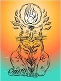 Hand drawn vector yoga cat with hand mudra. - 204096398