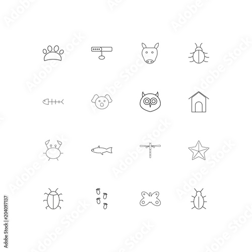 Plexiglas Uilen cartoon Animals linear thin icons set. Outlined simple vector icons